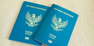 paspor, henley passport index, visa