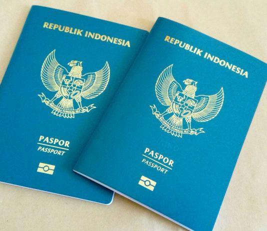 paspor, henley passport index, visa